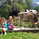 Casa per Vacanze Dolomiti